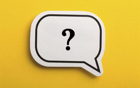 No Question is a Dumb Question: Your Teacher Offer Their Advice